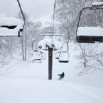 2018 Japanese Snow Season Outlook – The Grasshopper
