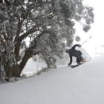 BULLER – Harro's Photo Snow Reports