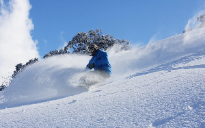 Photo Snow Report – HOTHAM Bounces Back with 15cm of Fresh