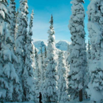 Whistler – 5.5m of Snow in November 09!