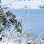 Snow Season Outlook 2015 – June Update – Australia – Welcome to Winter