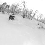 12 – 13 August, 2010 – Powder at Thredbo