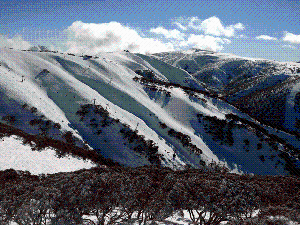 Dirt Track to Powder – The Barry Way to Mt Hotham