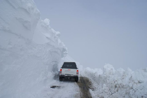 NZ Weekly Weather Blog – High Fives All Round