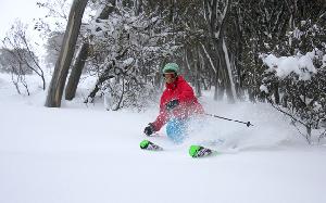 Photo Snow Report – HOTHAM Half a Metre of Snow