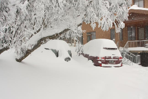 August Snow – Over 2m and Counting
