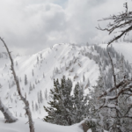 PHOTOS – Shredding Sidecountry in Alta