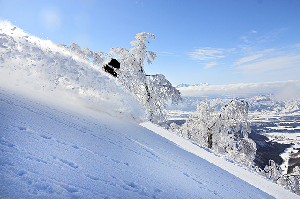 The Mountainwatch Guide To Nozawa Onsen