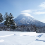 JAPAN SNOW WRAP – The Beginning