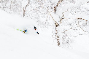Niseko Japan – Conditions Wrap Up – February