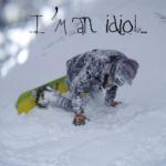 I'm An Idiot!