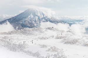 Niseko Japan – Fortnightly Wrap Up – January 31st