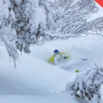 SNOW ALERT AUS – 40 to 80cm – The Spring Powder Hammer