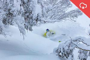 SNOW ALERT AUS – 40 to 80cm – The Spring Powder Hammer