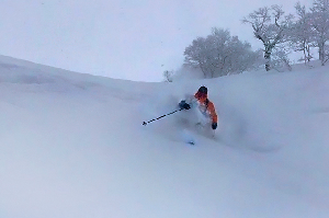 The Most Versatile Skis Ever? – Fat-Ypus D-Riddum – Gear Locker