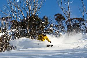 Chillfactor Magazine's Guide To The Best Men's Skis For Australia