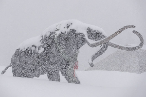 Aspen Skiing Company Makes a Mammoth Acquisition