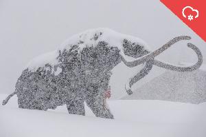 Snow Alert – Sierra To Be Hit Again