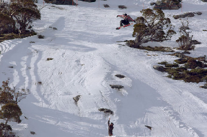 Watch the Shredbots Absolutely Destroy Perisher Last Year – Video