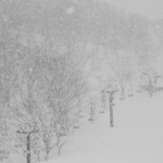 What Will El Nino Mean for the Upcoming Japanese Snow Season? – The Grasshopper
