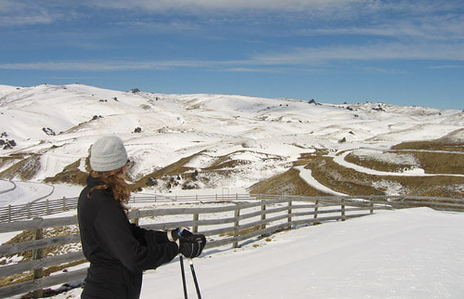 Snow Farm Gallery
