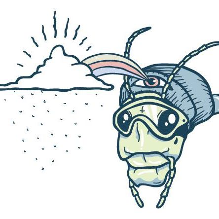 The Grasshopper – The Latest Snow Forecast