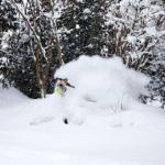 Cultural Sensitivity vs Deep Powder Lines – Riding the divide in Japan