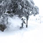 BULLER Photo Snow Report – Season's First 1 Foot Dump