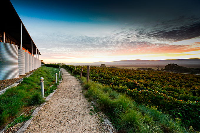 No doubt you've driven past countless wineries on your way to the Snowy Mountains, but have you ever taken the time to stop and investigate one of them? Image:: Lerida Estate