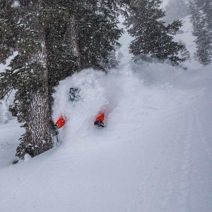 An El Nino could see good snowfalls in the Sierras in February and March, which could mean powder days in  Mammoth like this one last March. Bernie Rosow getting deep. Photo: Christian Pondella.