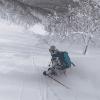 Winterfox – A Stunning Journey Through Hokkaido's Winter By Freeskier Lena Stoffel – Video