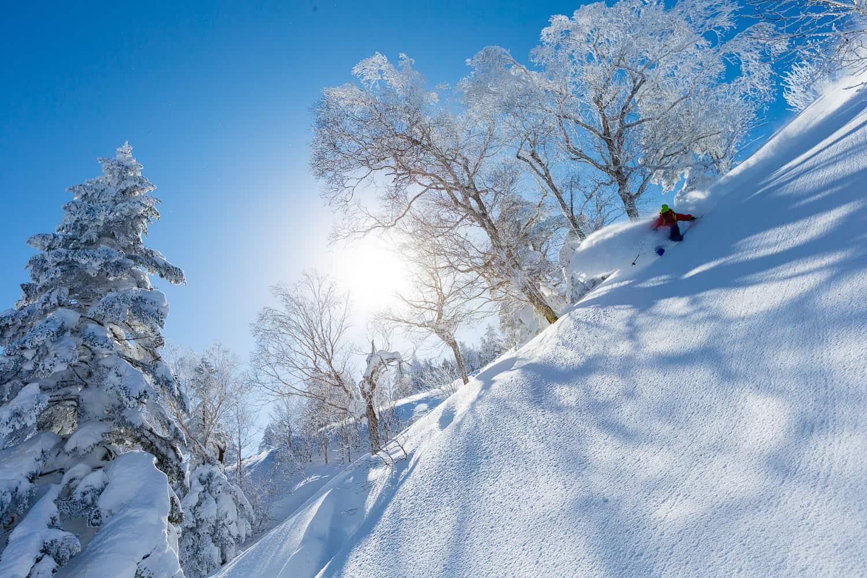 Josh Daiek skiing at Shiga Kogen