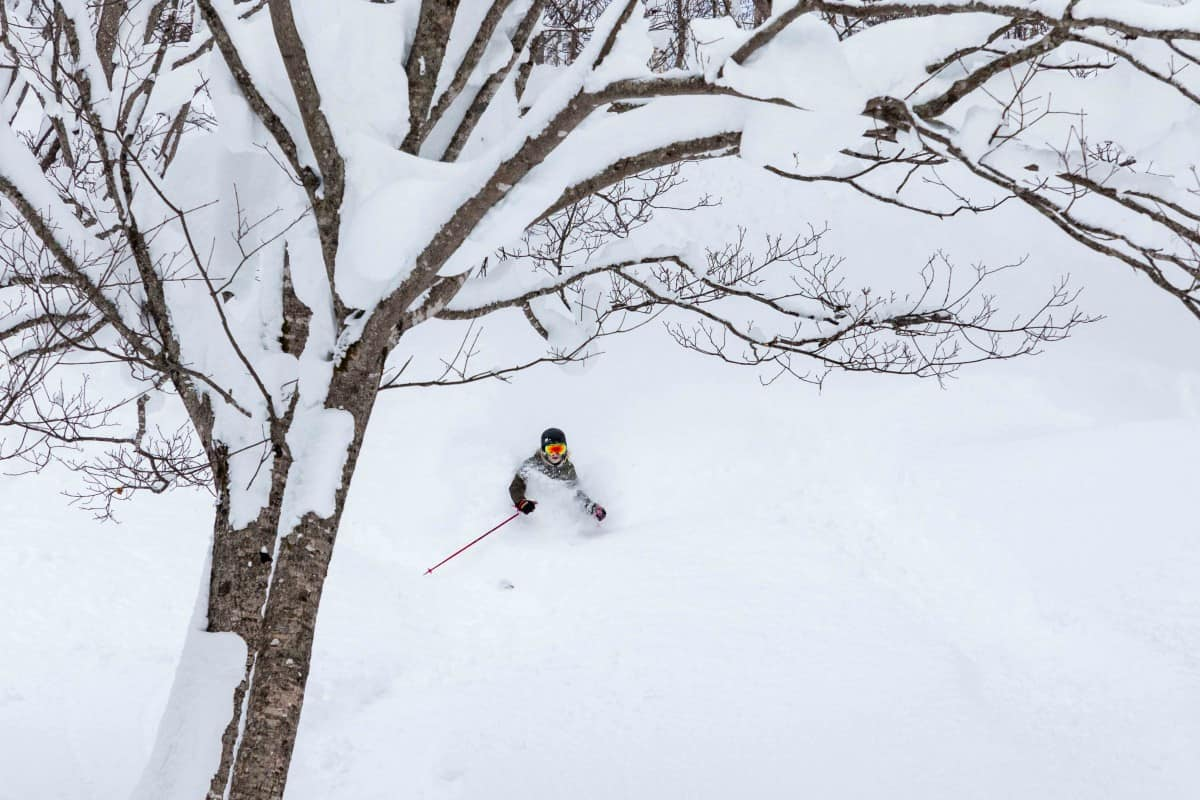 2018-2019 Japanese Snow Season Outlook - January Update