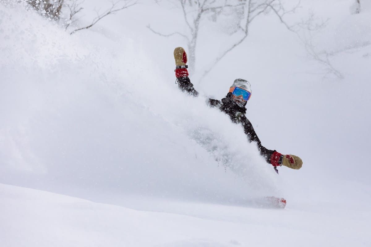 Niseko Japan Fortnightly Wrap Up – February 15th 2019