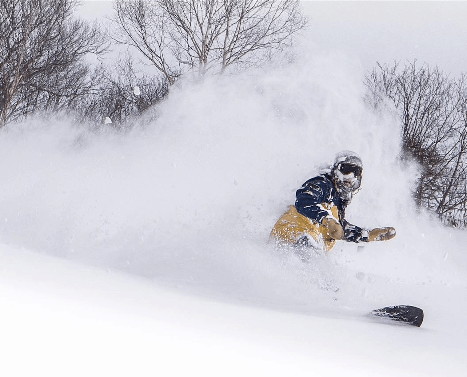 The Grasshopper's Weekly Japan Forecast - Powder day for Honshu and