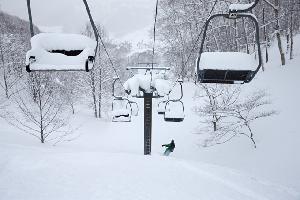 2018 Japanese Snow Season Outlook - The Grasshopper