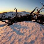 AUSSIE WEEKLY SNOW JOURNAL – Farewell Winter