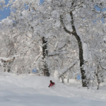 World Snow Wrap Up Vol. 15, 7 February – it's Cold Outside