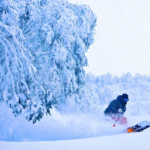 SNOW JOURNAL – The Storm Of The Season