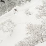 Asahikawa – The gateway to Central Hokkaido's Powder Belt – Travel