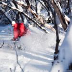 2 – 3 August, 2010 – New Snow Revitalises Buller