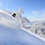 The Mountainwatch Guide To Nozawa Onsen