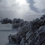 WEATHER ANALYSIS – Wild Winds at Thredbo
