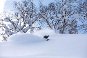 World Snow Wrap – Japan, Europe and America