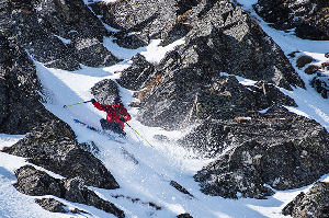 Buller X - Proof of Big Mountain Freeriding in Our Backyard - Event Recap