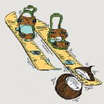 Transfer Guru's Guide to Good Gear – Backcountry Gear