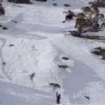 Watch the Shredbots Absolutely Destroy Perisher Last Year – Video