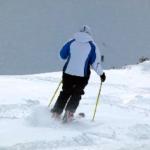 STEVE LEE REVIEWS – Women's Skis