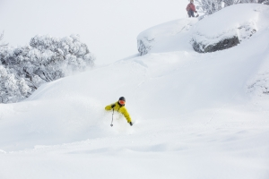How To Find Pow In Australia - Some Local's Reveal Their Secrets
