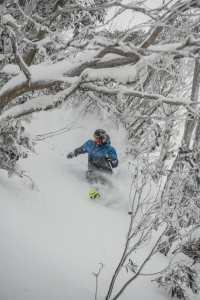 Coen Bennie-Faull, deep in the trees at Buller on Sunday, August 19. Photo: Tony Harrington
